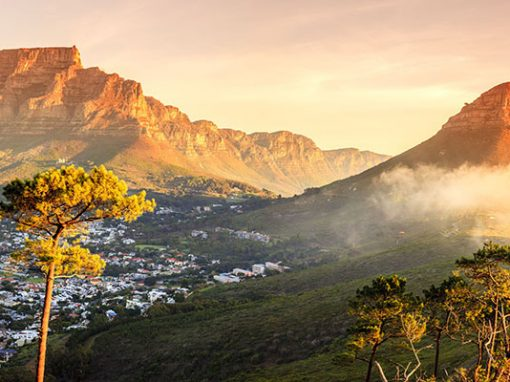 Building A Balance – The South Africa Experience